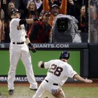 Photo -   San Francisco Giants' Marco Scutaro reacts as Buster Posey (28) scores during the third inning of Game 7 of baseball's National League championship series against the St. Louis Cardinals Monday, Oct. 22, 2012, in San Francisco. (AP Photo/Mark Humphrey)