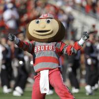 Photo - MASCOT: Ohio State mascot Brutus Buckeye leads a cheer before the  Buckeye's take on Purdue in Big Ten college football action in Columbus, Ohio on Saturday, Oct. 11, 2008. (AP Photo/Amy Sancetta) ORG XMIT: OTKAS101