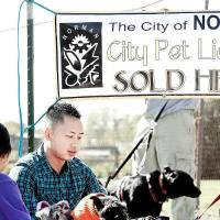 Photo - Ken Nguyen, Moore, waits outside the gate for the gate to open for Howl O' Ween open house and pet clinic at the Norman Animal Shelter on Saturday, Oct. 29, 2011, in Norman, Okla.    Photo by Steve Sisney, The Oklahoman ORG XMIT: KOD