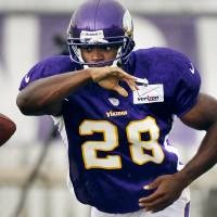 Photo -   Minnesota Vikings running back Adrian Peterson takes a handoff during NFL football training camp, Tuesday, Aug. 14, 2012, in Mankato, Minn. (AP Photo/The Star Tribune, Jerry Holt) MANDATORY CREDIT; ST. PAUL PIONEER PRESS OUT; MAGS OUT; TWIN CITIES TV OUT