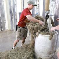 Photo - Nick Newby, Pachyderm Supervisor at the Oklahoma City Zoo, puts food into a feeder for Asha at the new Elephant Exhibit on Tuesday, April 5, 2011. Asha, who's due date is getting closer, will give birth in this enclosure inside the new Elephant Exhibit at the Zoo. Photo by John Clanton, The Oklahoman ORG XMIT: KOD