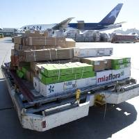 Photo - In this Jan. 9, 2014 photo, a load of flowers is rushed to a cooling unit at the Miami International Airport. In the weeks leading up to Valentine's Day, about 738 million flowers come through the airport. (AP Photo/J Pat Carter)