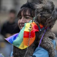 Photo -   A woman holds a dog wearing a rainbow colored bandana before Argentina's annual gay pride parade in Buenos Aires, Argentina, Saturday, Nov. 10, 2012. Argentina has improved rights for sexual minorities over the last years, becoming the first country in Latin America to legalize same-sex marriage, and this year, the Congress approved Argentina's gender identity law, granting people the right to change their legal and physical gender identity simply because they want to, without having to undergo judicial, psychiatric and medical procedures beforehand. (AP Photo/Natacha Pisarenko)
