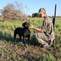 Photo - Dove season opens Sept. 1 Oklahoma, kicking off the hunting seasons. State wildlife officials estimate there are about 50,000 dove hunters in the state who harvest about 1 million birds each year.   - Photo by Wade Free