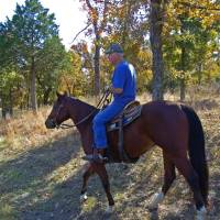 Photo - A rider hits the trails at Arrowhead State Park at Lake Eufaula.
