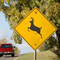 Photo - A deer crossing sign is seen Wednesday on 2nd Street near Midwest Blvd. in Edmond. Photo by Paul B. Southerland, The Oklahoman  PAUL B. SOUTHERLAND