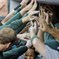 Photo - Oakland Athletics' Coco Crisp is welcomed back to the dugout after hitting a solo home run to start the baseball game against the Houston Astros, Friday, April 5, 2013, in Houston. (AP Photo/Pat Sullivan)