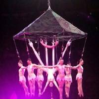 Photo - In this photo provided by Frank Caprio, performers hang during an aerial hair-hanging stunt at the Ringling Brothers and Barnum and Bailey Circus, Friday, May 2, 2014, in Providence, R.I. A platform collapsed during an aerial hair-hanging stunt at the 11 a.m. performance Sunday, May 4, sending eight acrobats plummeting to the ground. At least nine performers were seriously injured in the fall, including a dancer below, while an unknown number of others suffered minor injuries. (AP Photo/Frank Caprio) MANDATORY CREDIT
