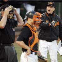 Photo - OSU head coach Frank Anderson, right, argues a call with an umpire near catcher Kevin David (25), center, during the Big 12 college baseball game between Texas and Oklahoma State University at Allie P. Reynolds Stadium in Stillwater, Okla., Friday, April 3, 2009. Photo by Nate Billings, The Oklahoman ORG XMIT: KOD