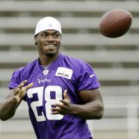Photo - Minnesota Vikings running back Adrian Peterson catches the ball during NFL football training camp, Friday, July 26, 2013, in Mankato, Minn. (AP Photo/Charlie Neibergall)