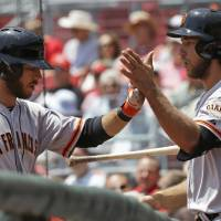 Photo - San Francisco Giants starting pitcher Madison Bumgarner, right, congratulates Brandon Crawford after Crawford hit a three-run home run off Cincinnati Reds starting pitcher Mike Leake in the fourth inning of a baseball game, Thursday, June 5, 2014, in Cincinnati. (AP Photo/Al Behrman)