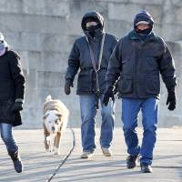 Photo - South Boston residents who did not wish to be identified walk their dogs at Castle Island in Boston, Wednesday, Jan. 23, 2013.  The National Weather Service says it's not expected to get above 17 degrees in Boston, with the wind chill making it feel five below. (AP Photo/Michael Dwyer)