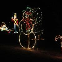 Photo - Cars drive through Joe B. Barnes Regional Park during the opening ceremony of the Midwest City Holiday Lights Spectacular.