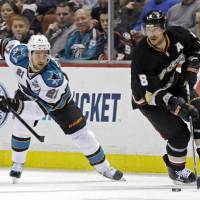 Photo - Anaheim Ducks right winger Teemu Selanne (8), of Finland, skates against San Jose Sharks left winger T.J. Haliardi (21) in the second period of an NHL hockey game in Anaheim, Calif., Monday, March 25, 2013. (AP Photo/Reed Saxon)