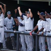 Photo - Jackson State's dugout celebrates after teammate Desmond Russell (not shown) scored the team's only run in the fourth inning during an NCAA college baseball tournament regional game against Louisiana-Lafayette in Lafayette, La., Friday, May 30, 2014. Jackson State won 1-0. (AP Photo/Jonathan Bachman)