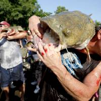 Photo - HAND-FISHERMAN / NOODLER: Marion Kincaid of Peru, Kansas unloads a catfish during the Okie Noodling Tournament in Pauls Valley, Okla., Saturday, July 11, 2009. Photo by Bryan Terry, The Oklahoman ORG XMIT: KOD