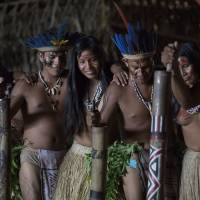 Photo - In this May 24, 2014, photo, men and women from various tribes dance in the Tatuyo indigenous community near Manaus, Brazil. The community of thatched palm roofed houses is home to nine families who moved to the riverside plot some 15 years ago from deep inside the rainforest. While they normally wear the shorts, t-shirts and flip-flops that are standard fare throughout Brazil, the villagers change into their ceremonial finest to receive tourists. (AP Photo/Felipe Dana)