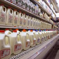 Photo - FILE - This Feb. 11, 2009 file photo shows a shopper looking over the milk aisle at the Hunger Mountain Co-op in Montpelier, Vt. Approval of a massive farm bill _ and the cost of a gallon of milk _ could hinge on a proposed new dairy program the House is expected to vote on this week.   (AP Photo/Toby Talbot, File)