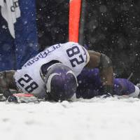 Photo - Minnesota Vikings running back Adrian Peterson lies on the field after injuring himself on a play in the first half of an NFL football game against the Baltimore Ravens, Sunday, Dec. 8, 2013, in Baltimore. (AP Photo/Nick Wass)
