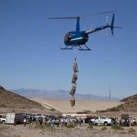 Photo -   In this Wednesday, Oct. 31, 2012 photo, after successfully netting and bagging four big horn sheep, a helicopter gently lowers the animals to the ground for biologists to examine, near Henderson, Nev. In an attempt to help repopulate areas of southern Utah, fifty sheep from the River and Muddy mountains in southern Nevada are being captured for relocation to Grand Staircase National Monument. (AP Photo/Julie Jacobson)
