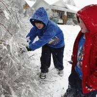 Photo - Daniel Smith, 8, and brother David, 6, break ice on limbs near their home on Friday, Jan. 29, 2010, in Purcell, Okla. after a winter storm. Photo by Steve Sisney
