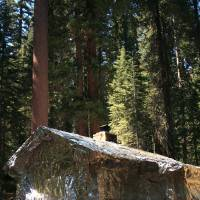 Photo - In this photo provided by the National Park Service, a Merced Grove cabin, next to the giant sequoias, is covered in metal foil by CalFire crews trying to protect structures from the Rim Fire burning through trees near Yosemite National Park, Calif., on Tuesday, Aug. 27, 2013. Firefighters gained some ground Tuesday against the huge wildfire burning forest lands in the western Sierra Nevada, including parts of Yosemite National Park. (AP Photo/National Park Service)