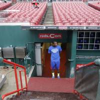Photo - Chicago Cubs left fielder Junior Lake checks the field prior to a baseball game against the Cincinnati Reds that was delayed by rain, Monday, April 28, 2014, in Cincinnati. (AP Photo)