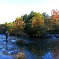 Photo - Clif Sikes of Earlsboro fly fishes for trout on the Blue River  Photo by Donny Carter