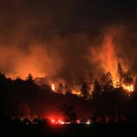 Photo - A wind driven vegetation fire eats up timber  at the Yellow Jacket Ranch east of Highway 128, early Wednesday May 1, 2013 in Knights Valley, Calif., on the Napa and Sonoma County line. Crews battled two small wildfires on Wednesday in California wine country that were pushed by gusty winds. (AP Photo/The Press Democrat, Kent Porter)