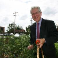 Photo - Robert Henry gathers vegetables at the Oklahoma City University Community Garden. Photo provided.