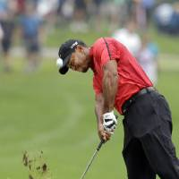 Photo - Tiger Woods hits from the lip of a fairway trap on the second hole during the final round of the Bridgestone Invitational golf tournament Sunday, Aug. 3, 2014, at Firestone Country Club in Akron, Ohio. (AP Photo/Mark Duncan)