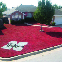 Photo - YARD / LOGO / PAINT / PAINTED / PAINTING: Nathan Bobert is a University of Nebraska fan living in Norman, but that doesn't stop him from showing off his school pride. ORG XMIT: 0810312208386532