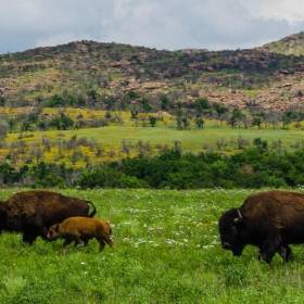 Oklahoma's most beautiful places