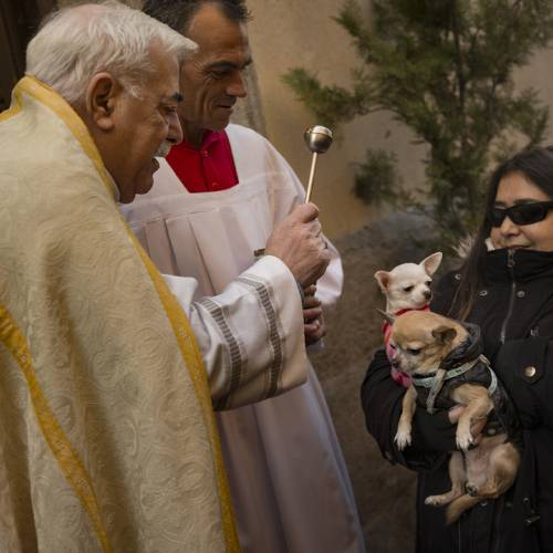 Spanish Catholics bring their pets to church for blessings