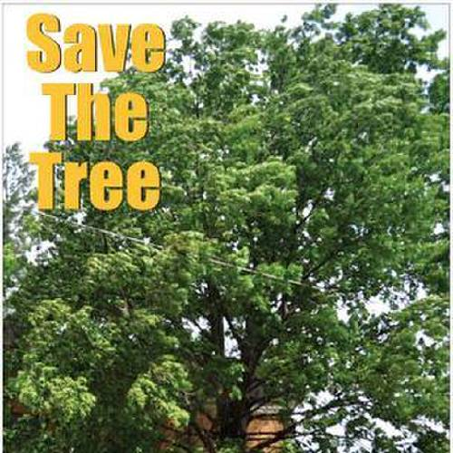 A group has organized to support saving the trees near the old Rogers County Courthouse in Claremore. (Claremore Progress photo)