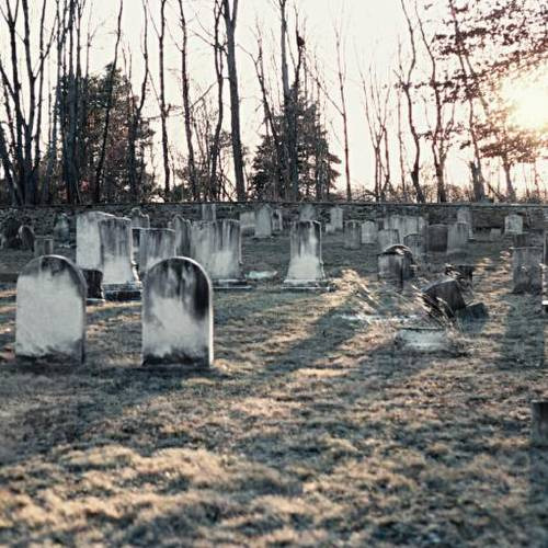 Tomb stones in a graveyard