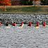 OKC RIVERSPORT YOUTH CHAMPIONSHIP  002.JPG