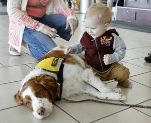 "Photo - Ponca City residents Jenna Ross and her 11 month old son Cooper pet ""Sophie"", owned by Gary and Suzanne Cannon, as pet therapy teams with H.A.L.O wander the concourse at Will Rogers World Airport in Oklahoma City, OK, to provide ""comfort and stress relief to travelers and visitors, Friday, April 4, 2014,  Photo by Paul Hellstern, The Oklahoman"