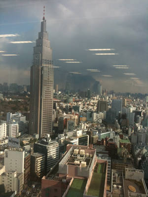 Photo - View from the 26th floor of the Shinjuku Maynds tower near Shinjuku Station, Tokyo Japan. Photo by Max Homerding.