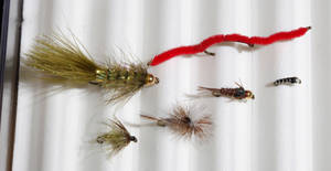 Photo - Top two: Woolly Bugger and San Juan Worm, Bottom four: Olive Soft Hackle, Parachute Adams, Gold Bead Pheasant and Zebra Midge for fly fishing at Backwoods in Oklahoma City Thursday, Jan. 17, 2013.  Photo by Paul B. Southerland, The Oklahoman