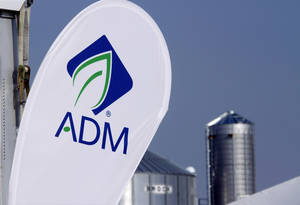 Photo - FILE - This Aug. 31, 2011 file photo shows the Archer Daniels Midland Company logo at the ADM booth during the Farm Progress Show, in Decatur, Ill. ADM on Monday, July 7, 2014 said it will pay about $3 billion to buy the privately held Swiss company Wild Flavors, which supplies natural ingredients to the food and beverage industry. (AP Photo/Seth Perlman, File)