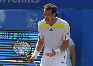 Photo - Andy Murray of Britain cries out after a point lost to Radek Stepanek of Czech Republic during their Queen's Club grass court championships 3rd round tennis match in London, Thursday, June 12, 2014. (AP Photo/Sang Tan)