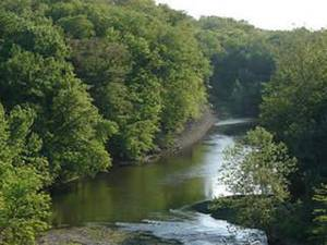 Photo - Salt Fork River (Courtesy of saltforkriver.org)