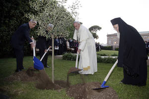 Photo - Pope Francis plants an olive tree with Israel's President Shimon Peres, left, Palestinian President Mahmoud Abbas, second from left, and Ecumenical Patriarch Bartholomew I, right, in a sign of peace during an evening of peace prayers in the Vatican gardens, Sunday, June 8, 2014. Pope Francis waded head-first into Mideast peace-making Sunday, welcoming the Israeli and Palestinian presidents to the Vatican for an evening of peace prayers just weeks after the last round of U.S.-sponsored negotiations collapsed. (AP Photo/Max Rossi, Pool)