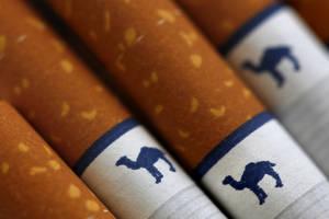 photo -   FILE - This file photo made Oct. 21, 2009, shows Camel cigarettes, a Reynolds American brand, in Philadelphia. Reynolds American Inc.'s third-quarter profit grew nearly 7 percent as higher prices and smokeless tobacco gains helped offset a decline in the number of cigarettes it sold. The nation's second-biggest tobacco company on Tuesday, Oct. 23, 2012 reported net income of $420 million, or 74 cents per share, for the three-month period ended September 30. That's up from $394 million, or 67 cents per share, a year ago. Adjusted earnings were 79 cents per share, matching beating analysts' expectations.(AP Photo/Matt Rourke, File)