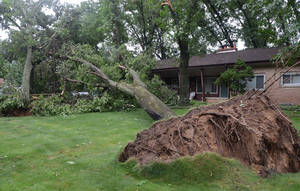 Photo - An uprooted tree lies in front of a home  \on West Minges, in Battle Creek, Mich., Tuesday, July 1, 2014. Severe thunderstorms packing high winds knocked down trees and power lines across parts of Michigan, leaving more than 230,000 without power and injuring a firefighter. (AP Photo/Battle Creek Enquirer, John Grap) NO SALES