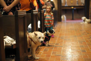 photo - Dogs stand in the aisle Sunday as their owners pray at St. Augustine of Canterbury Episcopal Church.