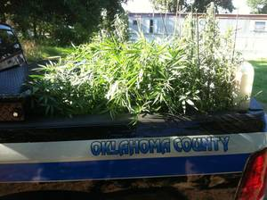 photo - Oklahoma County sheriff's office deputies assisting Oklahoma State Bureau of Investigation agents discovered a hydroponic marijuana-growing operation at 6300 S Indian Meridian in Choctaw. Photo PROVIDED