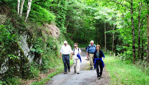 "Photo -  Modern-day pilgrims walk along ""The Way"" in southern France. Photo courtesy of Victor Block."