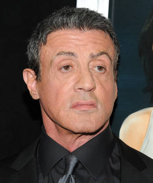 "Photo - Actor Sylvester Stallone attends the ""Bullet To The Head"" premiere at AMC Lincoln Square on Tuesday, Jan. 29, 2013 in New York. (Photo by Evan Agostini/Invision/AP)"